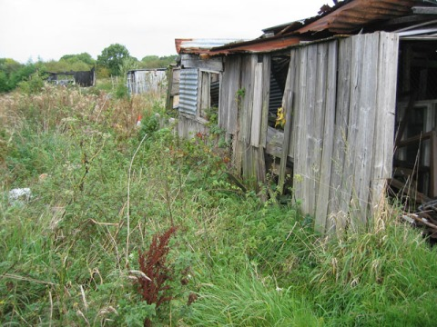 An abandoned shed.